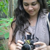 Jenn Segale documenting butterflies in Belize