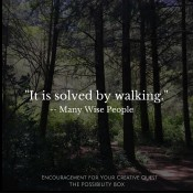 It Is Solved by Walking-3